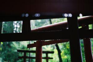 b-dhama-talks-rain2
